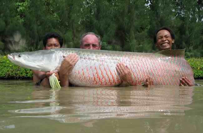 где в котельниково ловят рыбу