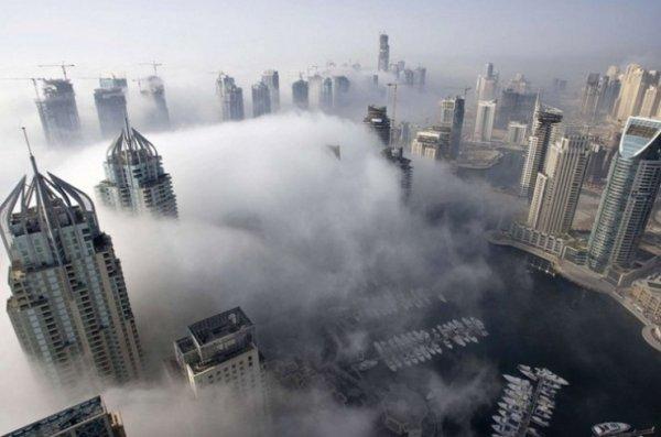 Утро в Дубаях