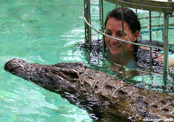 В одном водоеме с крокодилами (4 фото)