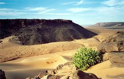 Пустыни Мавритании