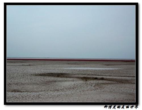 Красная песчаная отмель в Китае (9 фото)