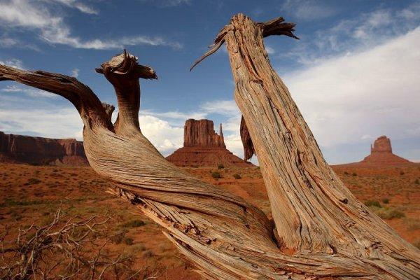 Monument Valley – красивый парк (20 фото)