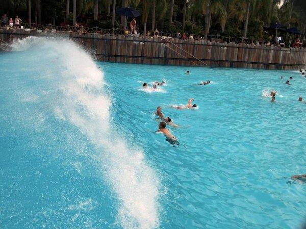 Плавательный бассейн в Дисней Ленде