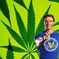 В Калифорнии появятся автоматы по продаже марихуаны