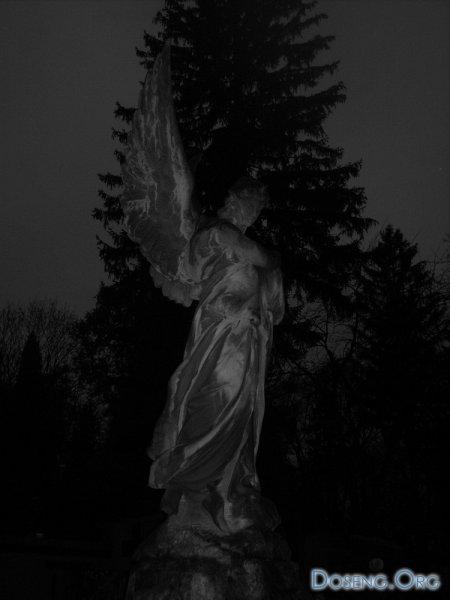 Во Львове предлагают экскурсии по ночному кладбищу