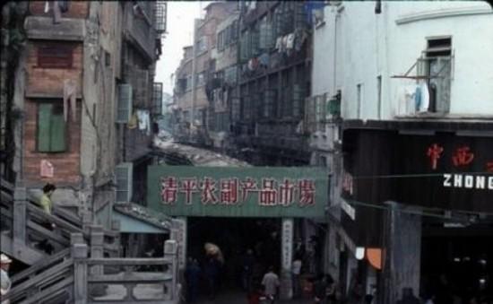 Китайский рынок экзотической пищи 14