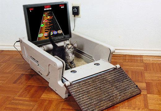 CatBox 360 – кошки тоже любят комфорт