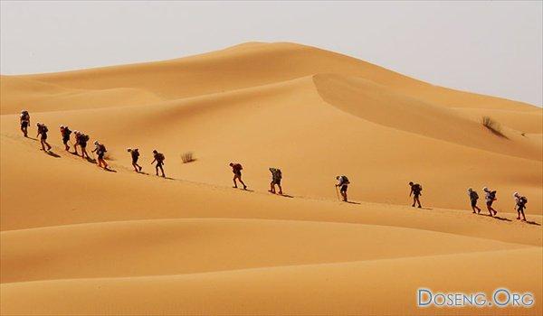Песчаный марафон в пустыне Сахара