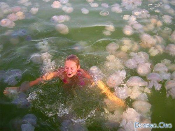 Девушка среди медуз