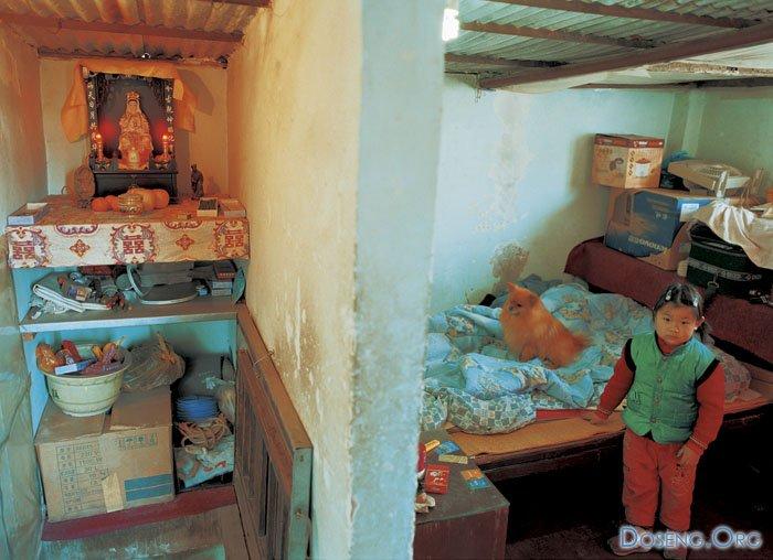 благополучия жилье бедняка фото смотрю этот фильм