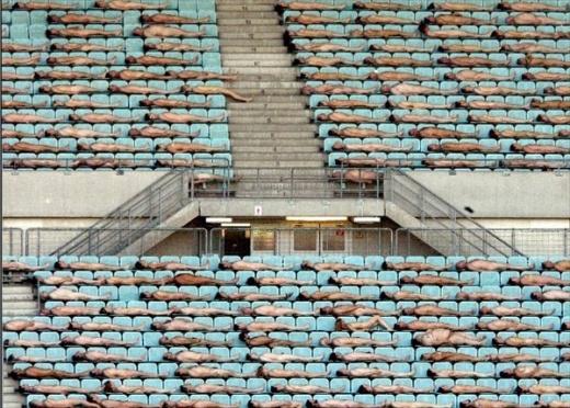 Спенсер Туник раздел 2008 человек на стадионе в Вене
