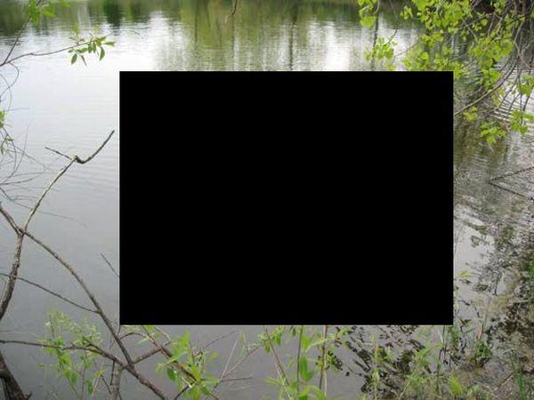 Находка в пруду со времен войны (4 фото)