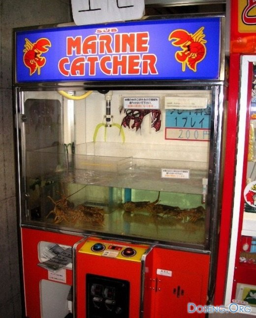куплю автомат для ловли игрушек