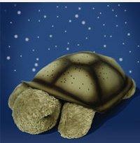 Черепаха в доме - звезды на потолке