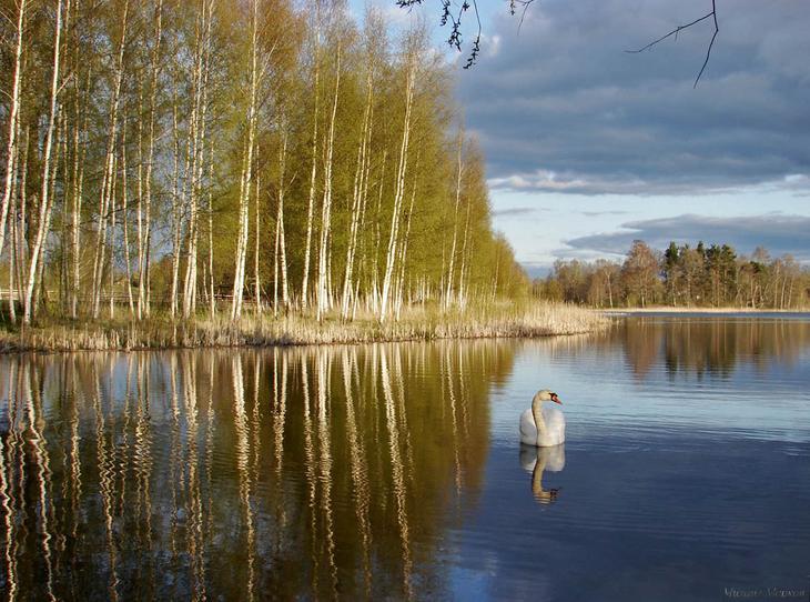 Пейзажи Михаила Маркова