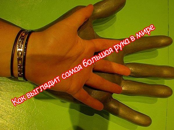 Самая большая рука в мире 2 фото фото