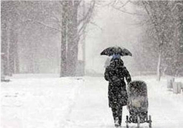 В Австралии впервые за полтора века выпал снег (4 фото)