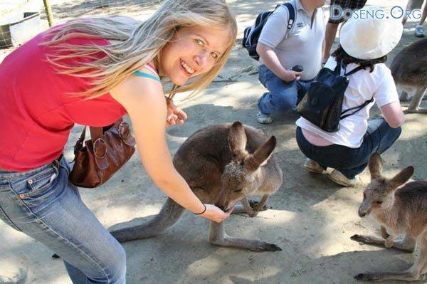 Случай в зоопарке (2 фото)