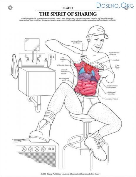 Учебник по анатомии для маленьких маньяков (9 сканов)