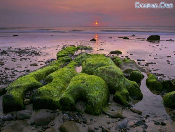 Сказочные пейзажи Шотландии от Ian Cameron