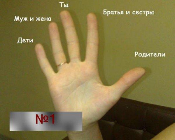 Почему обручальные кольца носят на безымянных пальцах?
