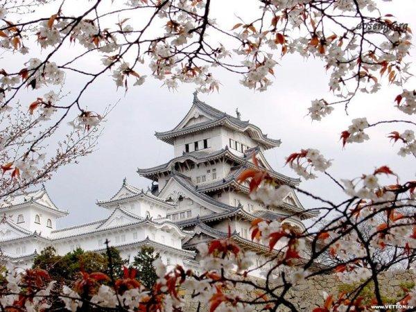 То, что вы не знали о Японии