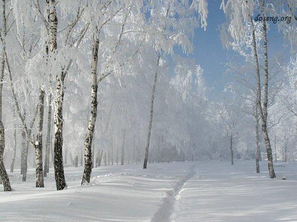 Сегодня выпал первый снег, скоро зима