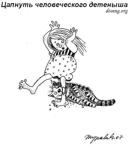 Обязанности кота по дому (18 картинок)