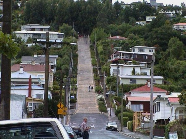 Самая крутая улица в мире, Новая Зеландия (10 Фото)