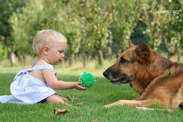 Дети и собаки (30 фотографий)