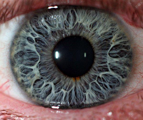 Глаза крупным планом 20 фото