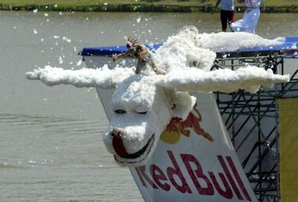 Red Bull Flugtag в Москве (28 фото)