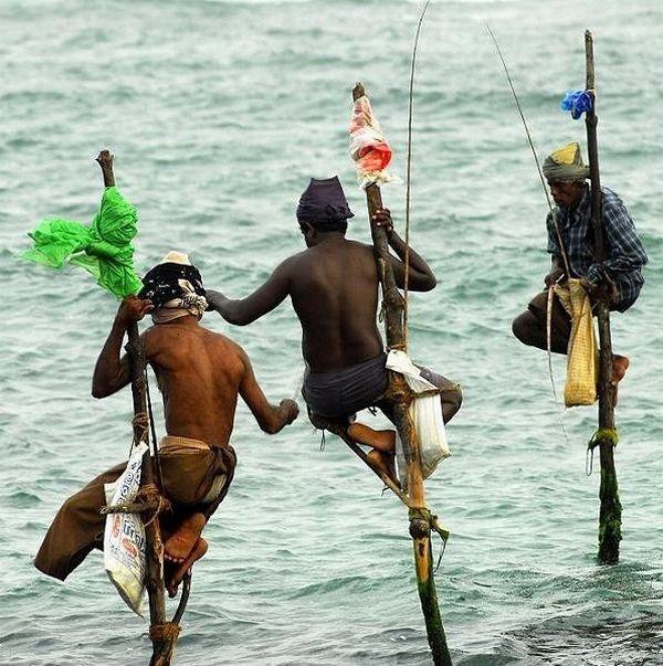 необычные фото на рыбалке