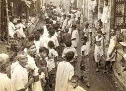 Индии грозит голод