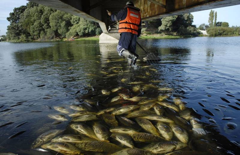 как ловят рыбу на каме