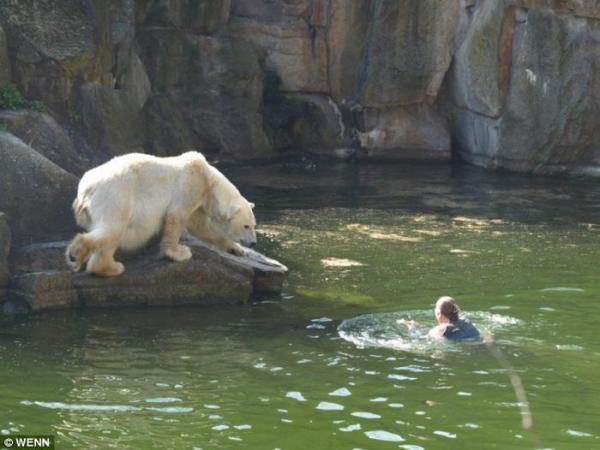 Чудесное спасение в зоопарке Берлина (4 фото)