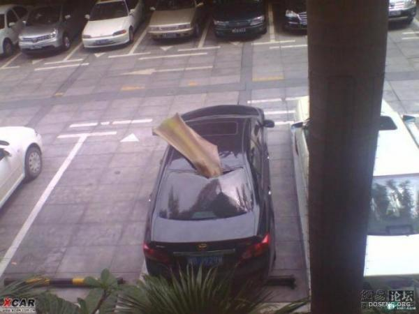 Подарок на парковке (2 фото)