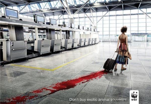 Рекламные постеры Всемирного фонда дикой природы (42 фото)