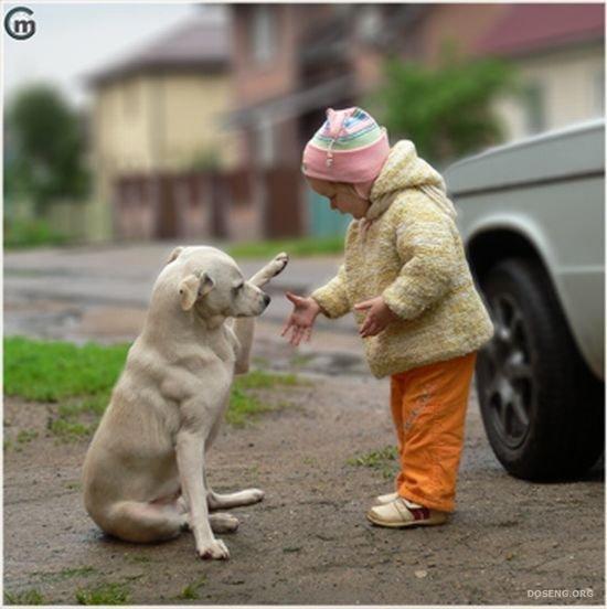 Настоящая дружба! (4 фото)