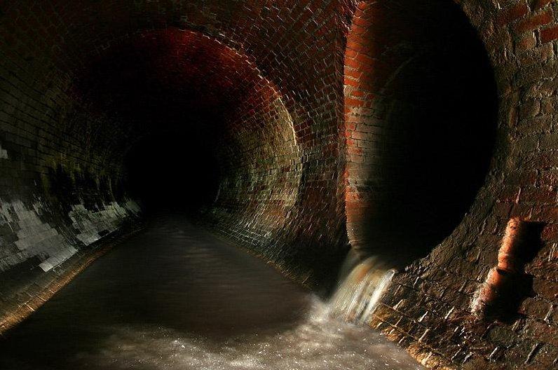 открывшемся меню фотографии подземной москвы эти всхлипы стоны
