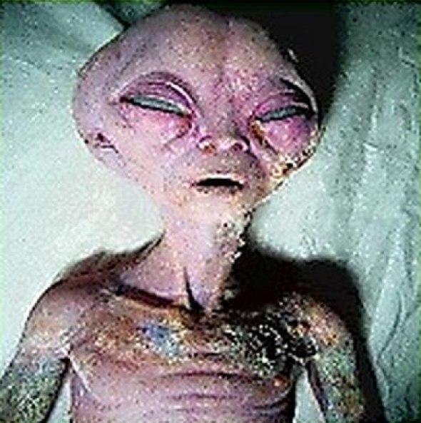 Настоящие инопланетяне (14 фото)