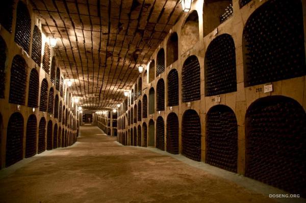 Молдавские винные подвалы (11 фото)