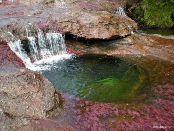 Разноцветная река (17 фото)