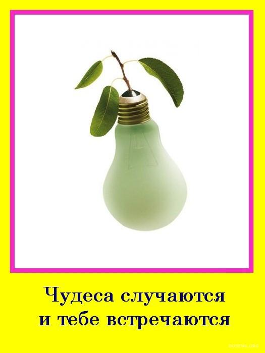 Мотиваторы :) (12 фото)