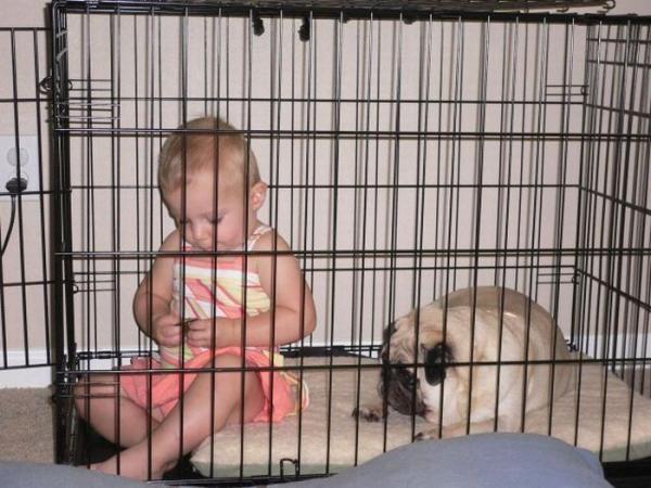 Дети в клетках (30 фото)
