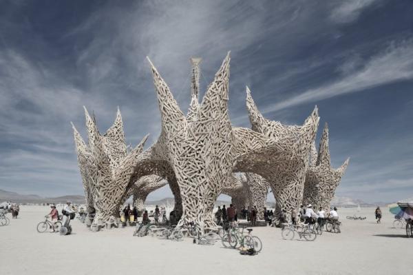 Burning Man (21 фото)