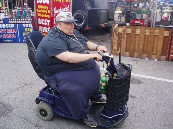 Почему они такие толстые? (18 фото)