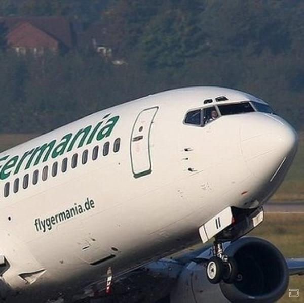 Самолет атакуют птицы (3 фото)