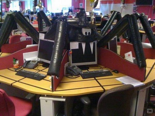 Как можно украсить свой офис (5 фото)