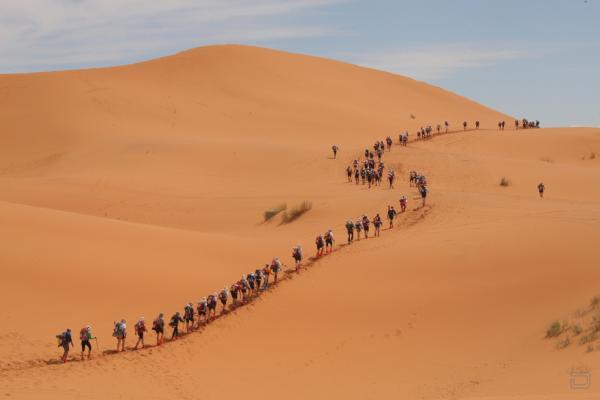 Песчаный марафон по Сахаре (13 фото)